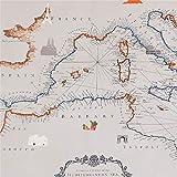 Art Gallery Fabrics Grauer Stoff mit Landkarte