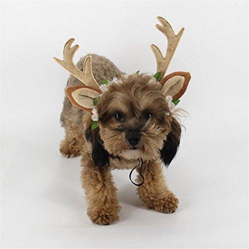 n Haustier Stirnbänder Zubehör Spielzeug Weihnachten Klein Mittel Groß Hund Katze Kopfschmuck Geweih Dekoration Lieferungen Kostüme 3 Größen (Hai Kostüm Essen)