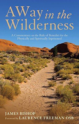 A Way in the Wilderness: A Commentary on the Rule of Benedict For The Physically And Spiritually Imprisoned (English Edition)