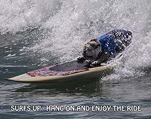 Surf Empire Poster Art Print 11 x 14 Bulldog anglais femmes Longboard Planche de Surf Combinaison short-photos mural
