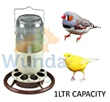 Quiko GLASS MINE LAMP HANGING 1LTR CANARY FINCH WILD BIRD SEED FEEDER DRINKER OPF058B