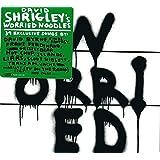 David Shrigley: Worried Noodles
