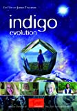 The Indigo Evolution