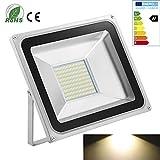 2x 100W - LED Flutlicht Fluter Strahler Außenstrahler Außenbeleuchtung Innenbeleuchtung Kaltweiss, wasserdicht IP65 SMD 220V
