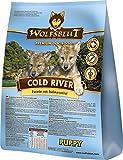 Wolfsblut Cold River PUPPY Trockenfutter für Welpen mit Forelle und Süßkartoffel (15KG)