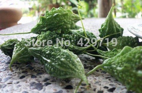 100 graines melon amer Balsam pommes indigènes graines de légumes thaï