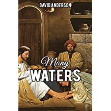 Many Waters: A Short Story (English Edition)