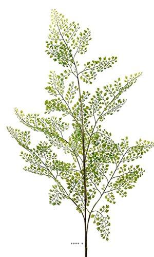 Kunstblumen, Adiantum Künstlicher Zweig bezaubernde h 140 cm