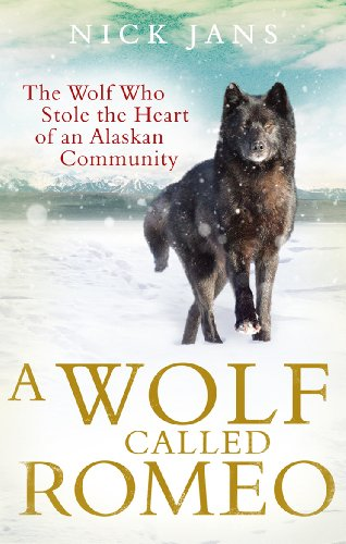 A Wolf Called Romeo (English Edition)