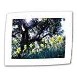 24\ x36\ : Art Wall Daffodils and The Oak 24 by 36-Inch Flat/Rolled Canvas by Kathy Yates with 2-Inch Accent Border