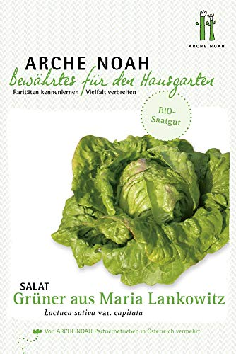 Arche Noah 6699 Krachsalat Grüner aus Maria Lankowitz (Bio-Salatsamen)
