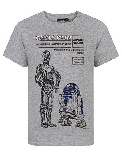 Star Wars C-3PO y R2D2Boy-Camiseta de manga corta para mujer gris gris...