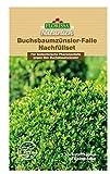 Florissa Buchsbaumzünsler-Falle Nachfüllset