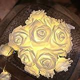 CozyHome Tumblr Led-lichtketting met rozen, wit, 4 m batterij, 20 warm witte bloemen, rozenlichtsnoer, kamerdecoratie, tuimel