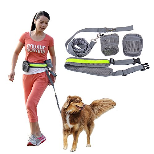 Manos libres Dog Leash