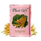 Plant Gift-Máscara de control de aceite de aceite de bergamota-Aumente la elasticidad de la piel, efecto hidratante de belleza.-25g*5