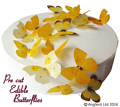 24 x Vorgeschnittene schöne gelbe Schmetterlinge essbares Reispapier/Oblatenpapier Kuchendekoration, Dekoration für Cupcake Kuchen Dessert, für Geburtstag Party Hochzeit Babyparty (M) (Dekorationen Hochzeit Schöne)