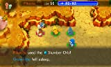 Pokemon Super Mystery Dungeon (Nintendo 3DS) Bild 1