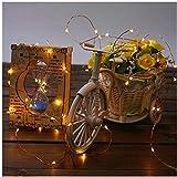 Lichterketten CLOOM Glühbirne LED Lichterkette USB Außen Halloween Dekoration Licht Schnur des Kupferdrahtsaite Outdoor Party LED Birne Gartenleuchten mit Fernbedienung Festival Dekorations (A, 10M)