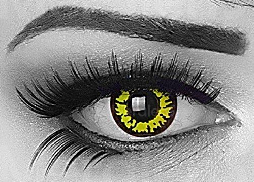 (MeralenS ein Paar farbige gelbe yellow Wolf Crazy Fun Jahres Kontaktlinsen mit Rand und gratis Linsenbehälter. Ideal für Halloween, Fasching, Karneval und Fastnacht.)