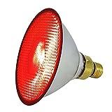 EIDER Energiespar Infrarotlampe für Wärmestrahlgerät- 100 W und 175 W - Top Qualität (100 Watt)