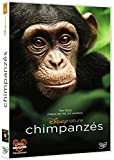 Chimpanzés [Import italien]