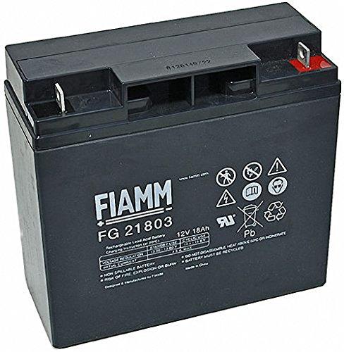 Original FIAMM Akku 12V 18Ah Batterie Akku FG21703 / FG21803 UPS USV GF 21703 -