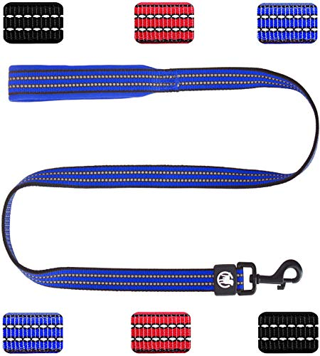 DDOXX Hundeleine Nylon reflektierend Hand-Schlaufe Neopren gepolstert 120 | viele Farben & Größen | für kleine & große Hunde | Führleine Hund Katze Welpe | Blau, M -