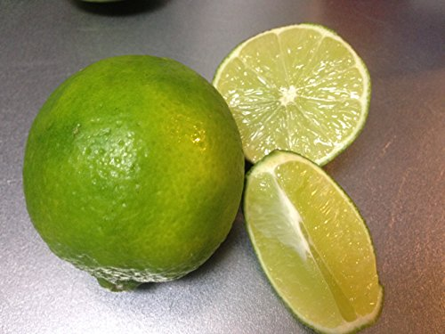 Preisvergleich Produktbild Mexikanische frische Limette (persisch Kalk) ber 17kg etwa 175 Kugel