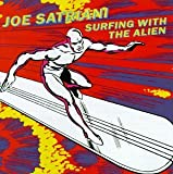 Surfing With the Aliens