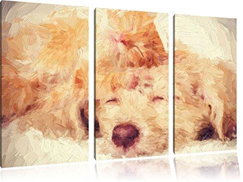 Gattino e cucciolo 120x80 immagine su tela dormire Art pennello effetti immagine Canvas 3 PC, XXL enormi immagini completamente Pagina con la barella, stampe d'arte sul murale cornice gänstiger come la pittura o un dipinto ad olio, non un manifesto o un banner,