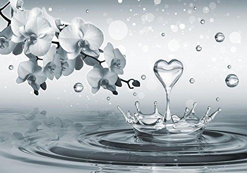 Fototapete Tapete Wandbild Welt-der-Träume | Wasserherz und Orchideen | P4 (254cm. x 184cm.) | Photo Wallpaper Mural 3494P4-MS | Natur Blumen Pflanzen Orchidee Herz Wasser Grau
