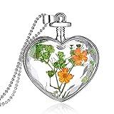 Feilok Damen Trocken Blumen Wünsche Flasche Anhänger Halskette Legierung Länge Kette für Frau (Blumen-N)