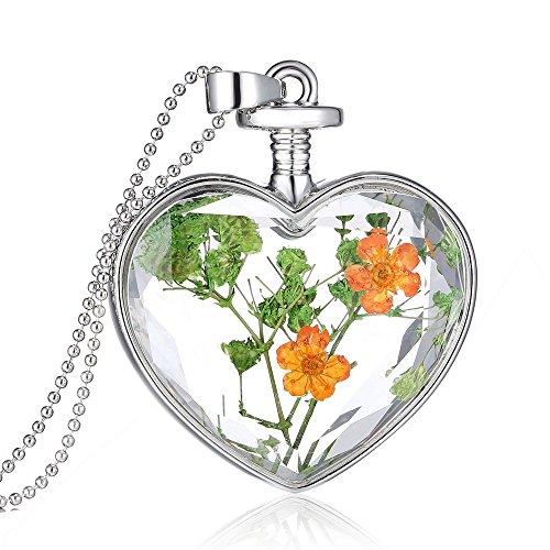Feilok Damen Trocken Blumen Wünsche Flasche Anhänger Halskette Legierung Länge Kette für Frau (Blumen-N) -