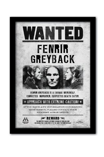 Pyramid International Harry Potter (Fenrir Wanted) Gerahmter Kunstdruck Kuriositäten, Mehrfarbig, 30x 40x 1,3cm
