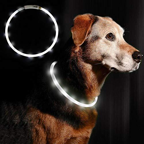 Anicoll LED Leuchthalsband Hunde Halsband weiß USB wiederaufladbar - Längenverstellbarer Haustier Sicherheit Kragen für Hunde und Katzen- 3 Modus 12 Lichte