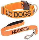No Dogs (not Good con altri cani) arancione colore codificato S-M L-XL collare e maniglia imbottita in neoprene 60cm 1.2m 1.8m lusso piombo set evita incidenti di attenzione altri del tuo cane in anticipo