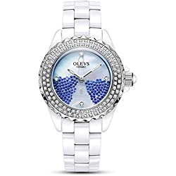 Lady ceramic/French romantic watches/Simple casual watches-C