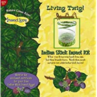 Insect Lore Living Twig - Stick Insect Kit