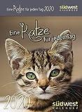 Eine Katze für jeden Tag 2020 Tagesabreißkalender -