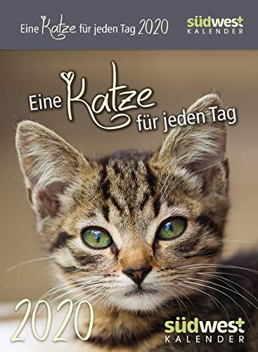 Eine Katze für jeden Tag 2020 Tagesabreißkalender