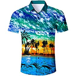 TUONROAD Camisa Hawaiana para Hombre 3D Estampada Funny Playa Palmera Camisas de Playa Modelo Casual Manga Corta Camisas Verano Camisa del Tema en la Fiesta de Bodas Cumpleaños - L