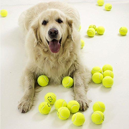 Palline da tennis gialle, ideali per cani di razza golden retriever, 5 pezzi
