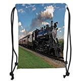 Custom Printed Drawstring Backpacks Bags,Steam Engine,Vintage Locomotive in Countryside Scenery Green Grass Puff Train Picture,Blue Green Black Soft Satin,5 Liter Capacity,Adjustable String Closu