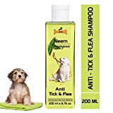 Dog Shampoos Review and Comparison