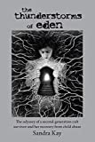 The Thunderstorms of Eden: The odyssey of a second-generation cult survivor and her recovery from child abuse