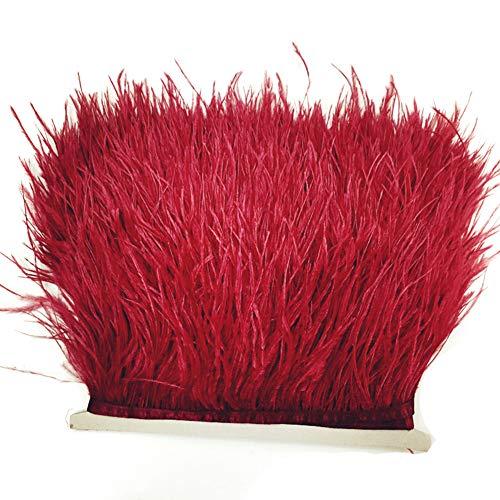 ROKF Straußenfedern, Fransen-Band, 8-10 cm, für Kleider, Nähen, Basteln, Kostüme, Dekoration, rot, 6 ()