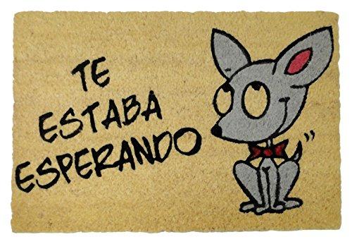 Felpudos Originales  con Diseño Perrito Te Estaba Esperando, Coco, 60
