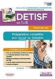 DETISF - Domaines de compétences 1 à 6 - Préparation complète pour réussir sa formation - Diplôme d'État de Technicien de l'intervention sociale et familiale