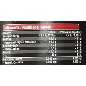 BWG Veganes L-Carnitin 100.000 Liquid – Hochdosiert – beliebt in Definitionsphase – frei von Gluten, Lactose – Premium Qualität – Mit Vitamin B1 & B6 – Trinkfertig, Geschmack: Ananas